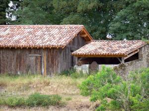 Gascon Landes Regional Nature Park - Museum of Grande Lande - Softwood products workshop of Luxey