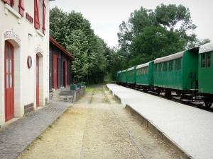 Gascon Landes Regional Nature Park - Facade of the Sabres station and train of Marquèze leading to the museum of Grande Lande of Marquèze