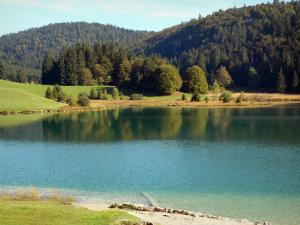 Genin lake - Lake, meadows, trees and forest in the Jura mountain range (Upper Bugey), in the towns of Charix, Échallon and Oyonnax