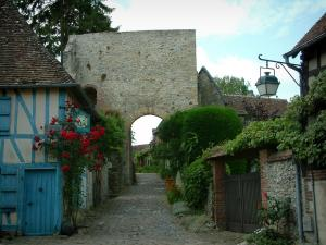 Gerberoy - Blue house and its climbing rosebush (red roses), narrow paved street, plants, flowers, shrubs and remains of the castle (Porte tower)