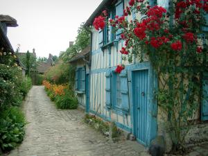 Gerberoy - Blue house and its climbing rosebush (red), narrow paved street lined with flowers and plants