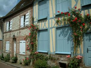 Gerberoy - Timber-framed house in blue shutters with climbing rosebushes (red roses), brick and stone residence with white shutters