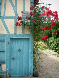 Gerberoy - Blue house and its climbing rosebush (red roses)
