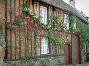 Gerberoy - Half-timbered house and bricks with climbing rosebushes (red and yellow roses)
