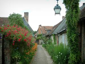 Gerberoy - Narrow paved street lined with flower-bedecked houses (flowers, rosebushes and plants)