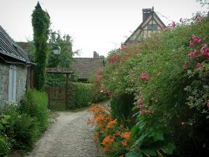 Gerberoy - Flower-bedecked narrow paved street (rosebushes, flowers, plants) and houses of the village