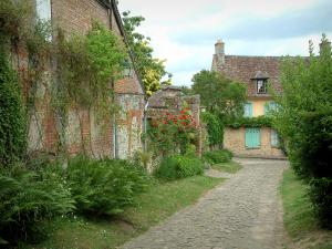 Gerberoy - Houses of the village, narrow paved street, rosebushes and shrubs