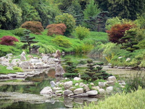 Giardino di bamb di prafrance 34 immagini di qualit in for Bambu giardino