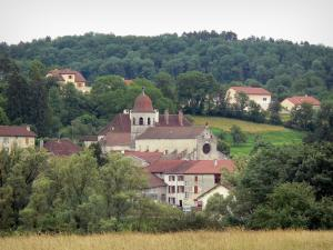 Gigny - Village with its abbey church and its houses, trees and field in foreground
