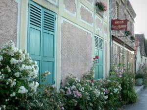 Giverny - Facade of the old Baudy mansion, roses and hollyhocks