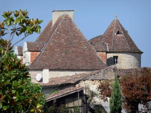 Gontaud-de-Nogaret - Roofs of the village