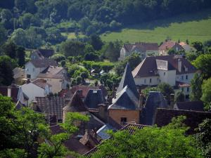 Gourdon - Trees and houses of the city, in Bouriane, in the Quercy