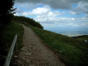 Grand Ballon - Footpath leading to the top of the mountain (Ballons des Vosges Regional Nature Park)