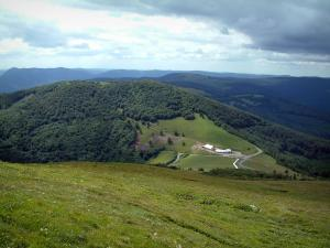 Grand Ballon - Alpine pasture and hills covered by forests in background (Ballons des Vosges Regional Nature Park)
