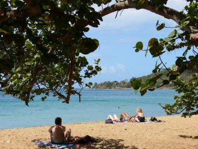Grande Anse Beach In Deshaies Tourism Amp Holiday Guide