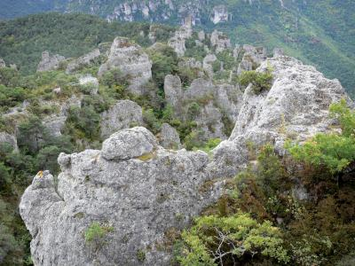 Grands Causses Regional Nature Park