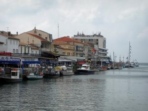 Le Grau-du-Roi - Fishing port, fishing boats, Colbert quay, shops, houses and buildings