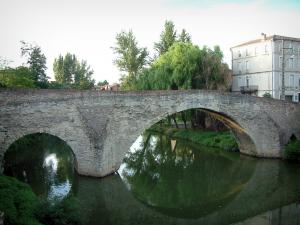 Graulhet - Vieux bridge spanning the River Dadou, trees and houses of the city