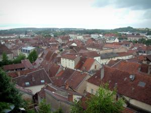 Gray - View of the roofs of the houses in the city