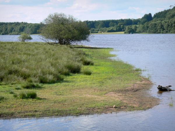 Great lakes of the Morvan - Saint-Agnan lake (artificial lake) and its banks; in the Morvan Regional Nature Park