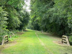 Green Axis of Thiérache - Hiking trail (old railway) lined with trees; in the Oise valley, in Thiérache