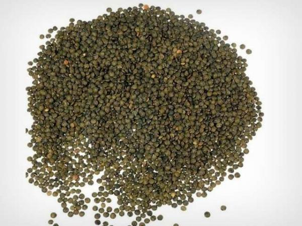 Green Berry lentils - Gastronomy, holidays & weekends guide in the Indre
