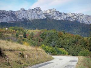 Grésivaudan valley - Grésivaudan road, trees and forest, cliffs of the Chartreuse mountain range overhanging the valley
