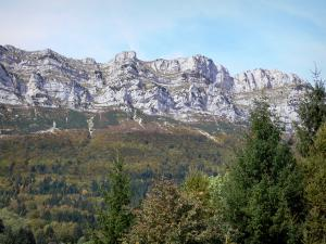 Grésivaudan valley - Trees and forests of the valley with views of the cliffs of the Chartreuse mountain range