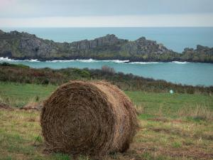 Grouin headland - Haystack, grassland, moor, cliffs and sea
