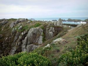 Grouin headland - Cliffs, grassland, vegetation and footpath