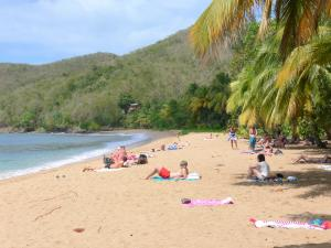Guadeloupe beaches - Grande Anse beach on the island of Basse-Terre, in the town of Deshaies: relaxing on the golden sand between coconut palms and the Caribbean sea