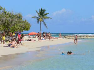 Guadeloupe beaches - Beach of Sainte-Anne on the island of Grande-Terre: lazing on the sand and swimming in the lagoon