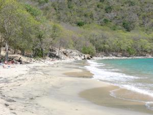 Guadeloupe beaches - Beach of the Crawen cove in Les Saintes archipelago, on the island of Terre-de-Haut: gray sand, sea and greenery