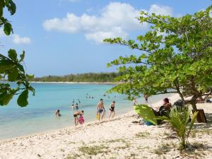 Guadeloupe beaches - Souffleur beach, on the island of Grande-Terre, in the town of Port-Louis: relaxing on the sandy beach shaded by trees and swimming in the turquoise sea