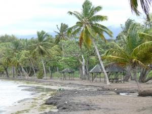 Guadeloupe beaches - Sainte-Claire beach on the island of Basse-Terre, in the town of Guava: gray sandy beach dotted with coconut palms and carbet huts