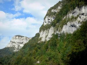 Guiers Mort gorges - Chartreuse mountains (Chartreuse Regional Nature Park): cliffs and trees