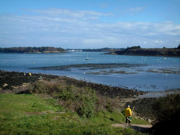 The Gulf of Morbihan - Tourism, holidays & weekends guide in the Morbihan