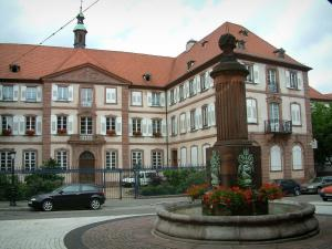 Haguenau - Flower-bedecked fountain and a building
