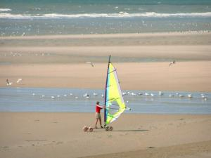 Hardelot-Plage - Opal Coast: sandy beach with a person practising the speed-sail (windsurfing board with wheels), gulls and the Channel (sea); in the Regional Nature Park of Opal Capes and Marshes