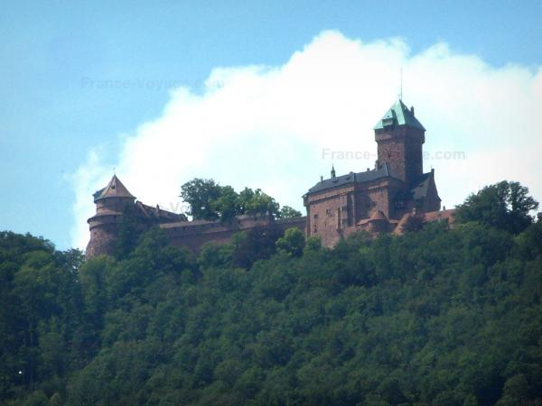 Haut-Koenigsbourg castle - Fortress surrounded by trees