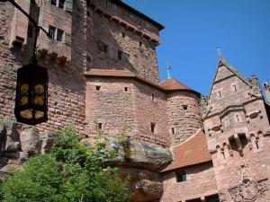 Haut-Koenigsbourg castle - Fortress with the main door and a tree