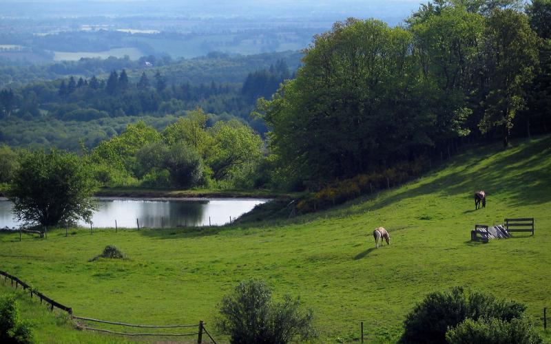 Monts De Blond
