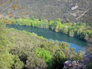 Hérault valley - Hérault river lined with trees