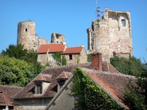 Hérisson - Remains (ruins) of the castle overlooking the houses of the medieval village