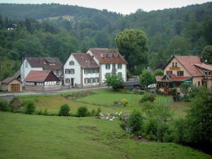 Hohwald - Meadow, gooses, river, houses and forest