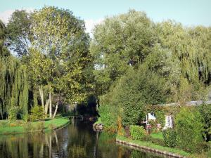 Hortillonnages of Amiens gardens - Gardens decorated with trees on the edge of the canal (water)