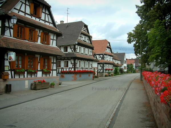Hunspach - Street decorated with flowers, white half-timbered houses