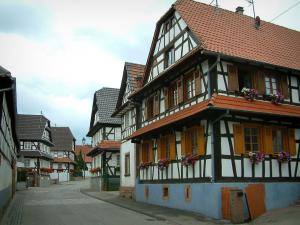 Hunspach - Street lined with white half-timbered houses and windows decorated with geranium flowers (geraniums)