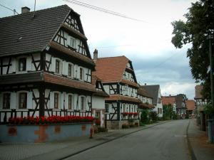 Hunspach - Street with white half-timbered houses decorated with geranium flowers (geraniums)