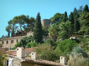 Hyères - Roofs of the houses with view of the trees in the park of the castle